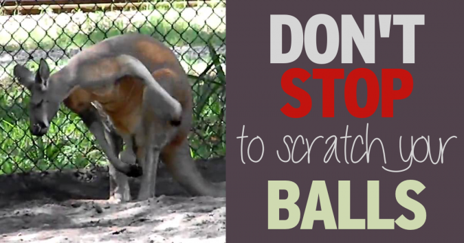 Don't stop to scratch your balls